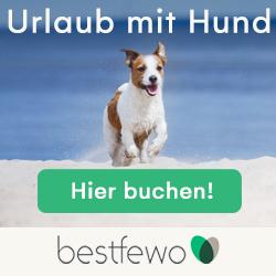 Ferienwohnung für einen Urlaub mit Hund