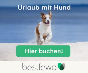 Best Fewo mit Hund